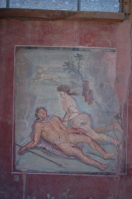 Album - ROME ANTIQUITE