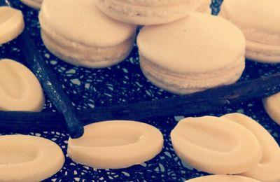 macaron à la vanille ( avec ou sans thermomix )