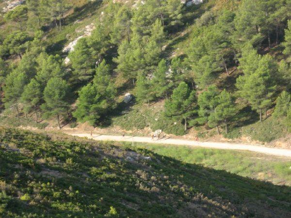 Les courses Nature et Montagne, du départ à l'arrivée. [touche F11 pour passer en plein écran]