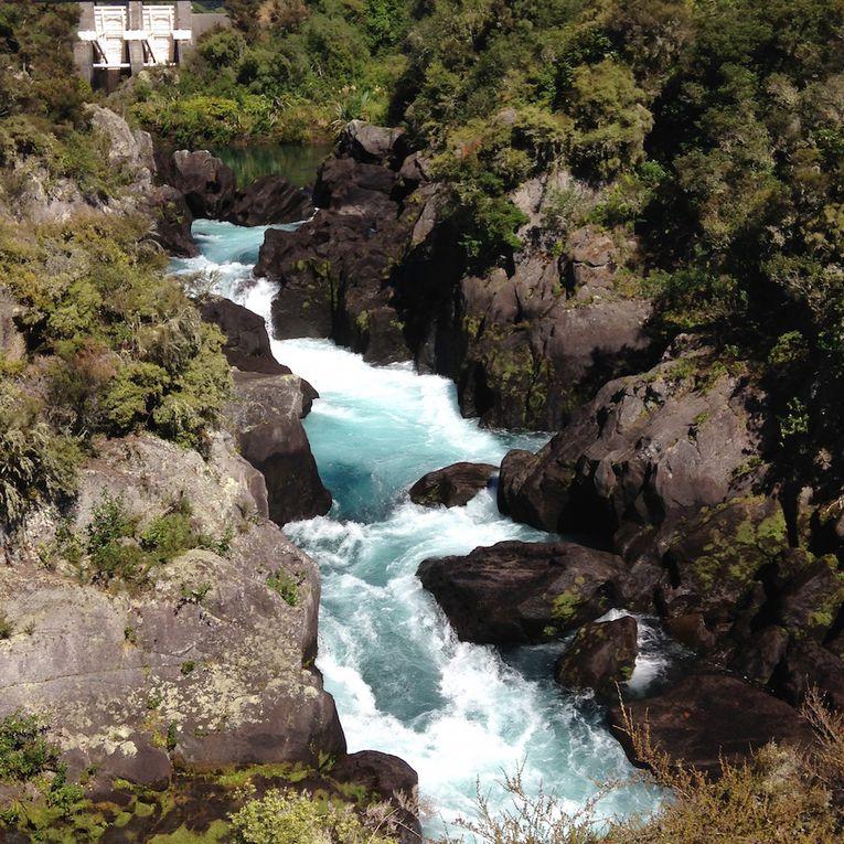 Aratiatia Rapids Walk