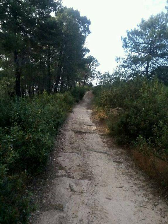 Etape 18 - Grimaldo - Riobosio - Galisteo - 33 km - (445 kms)