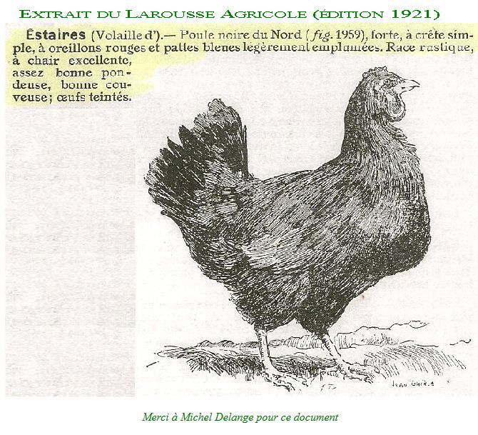 """Pour compléter la rubrique """"Croquis à croquer"""" du journal de FERME, voici d'autres documents anciens"""
