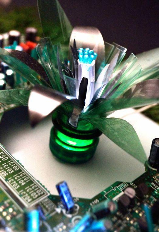Hybridations plantes et déchets électroniques.