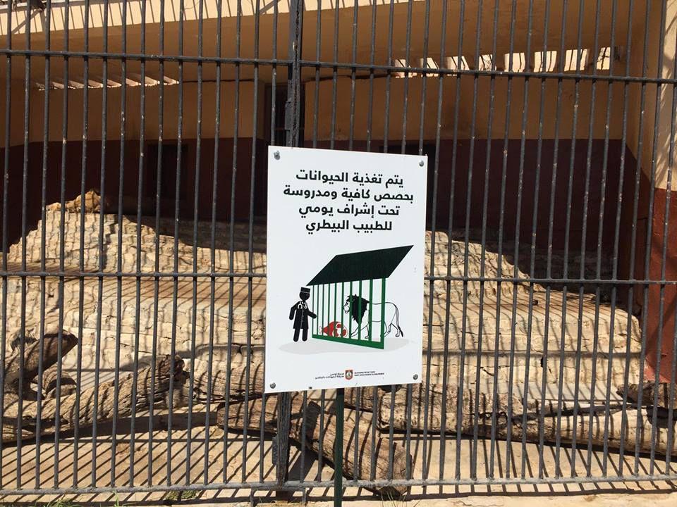 Tout est propre et soigneusement entretenu. Pourtant il est 13h et il y a foule. Le zoo de Tunis est agréable à visiter, net, clean, tout sauf l'image du mouroir, du parc de torture animalière que certains veulent donner de lui. POURQUOI? (Zoo du Belvédère, Tunis, 20.09.2017) © OAEEPV Groupe pour la Nouvelle Culture Citoyenne en Tunisie.