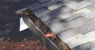 Why is a Gutter Guard Protection Required for Sustainable Properties?