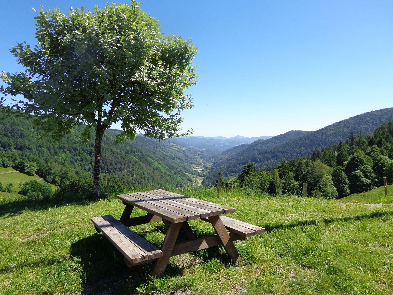 Col des Bagenelles avec vue sur la vallée de Ste marie aux mines
