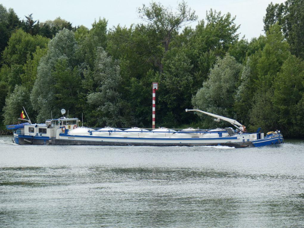 OMEGA , sur la Seine au passage de Poissy le 18 juin 2019