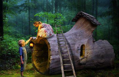 L'Enfant s'émerveille pour la Vie. Accompagnement de la nature féérique de l'enfant par Isabelle Ferchaud