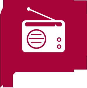 Le bêtisier audio de France Info en 2014.