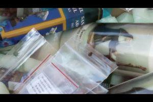 Boutique de produits ésotériques et de lithothérapie Arbre de Bien-Être