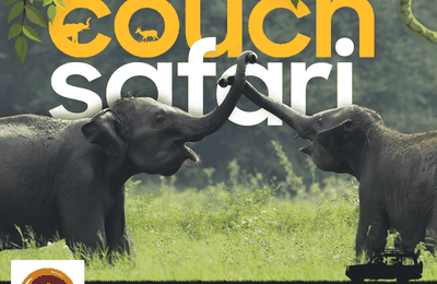 Explore SRI LANKA with a Couch safari