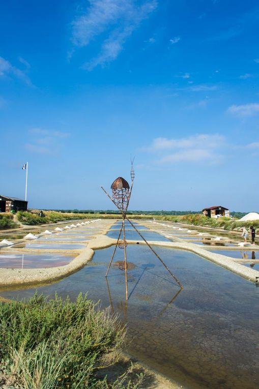 Marais salants - L'Ile d'Olonne