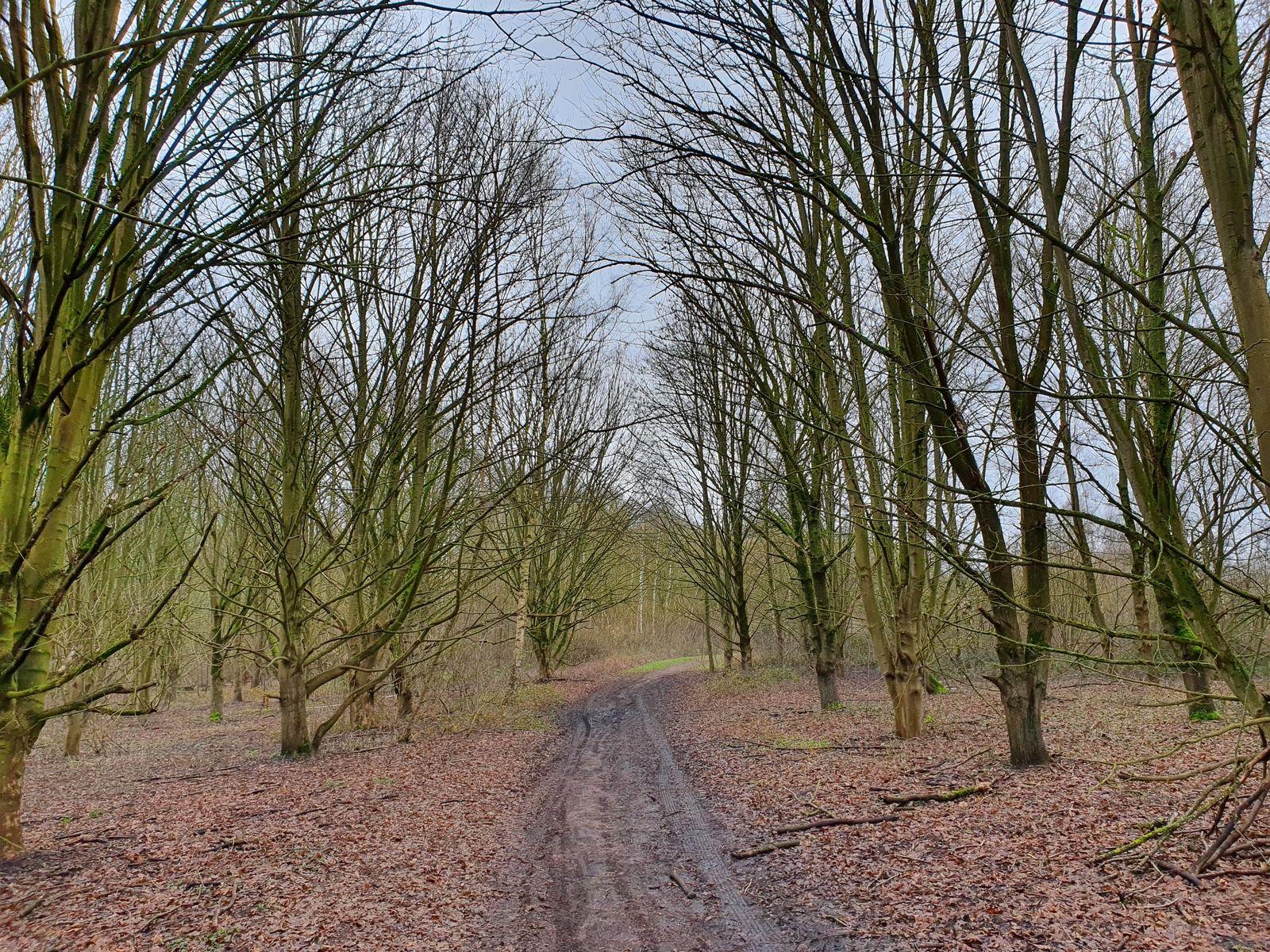 Parc de Nature et de Loisirs, Wingles
