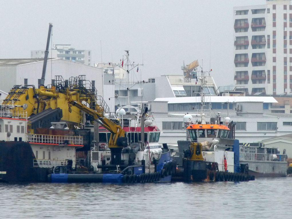LEANNE P , remorqueur à quai à la Seyne sur Mer le 28 février 2017