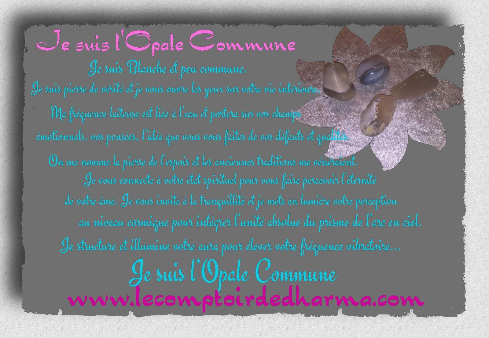 l'Opale Commune