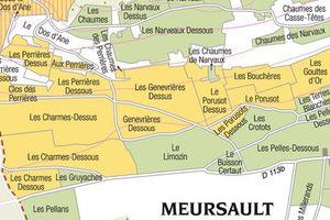 Des hommes et une terre: Le Meursault-Poruzot