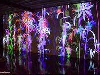 Virtuel, numérique, psychédélique... le monde de Miguel Chevalier