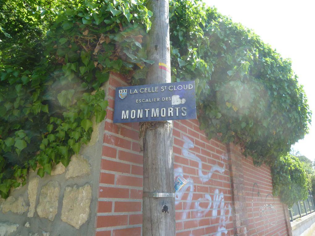 Randonnée de Saint-Germain-en-Laye à Vaucresson, 21 km.