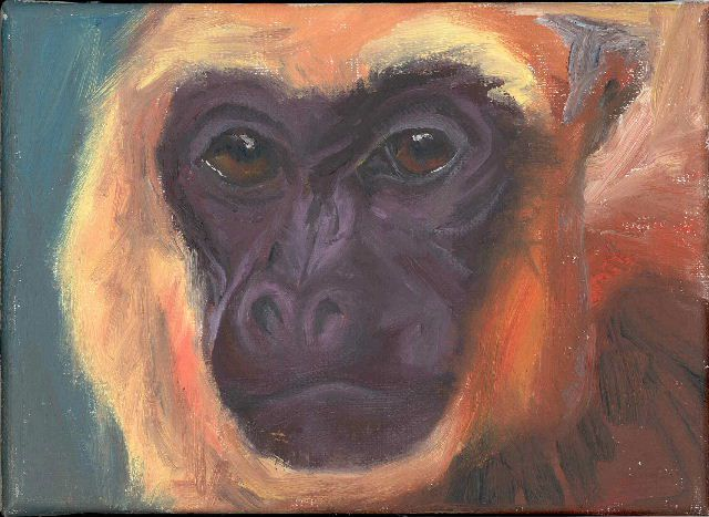 Le sujet de cette série porte également sur la diversité.       Mes voisins refusant de poser j'en ai fait des portraits indirects en les remplaçant par des primates.     Tous sont fragiles et témoignent de notre commune animalité.     La