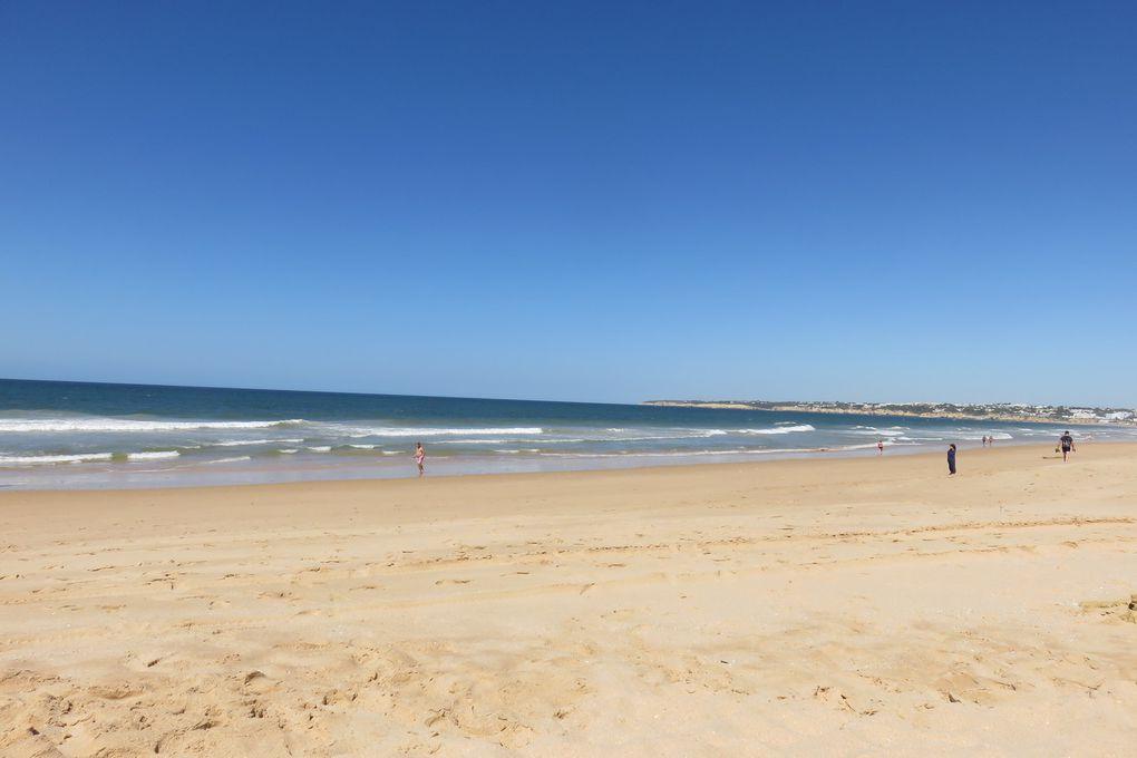Jour 17 - ARMACÃO DE PÊRA (plage)