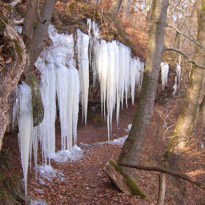 Des bonnets de lutin…mais en glace !!!