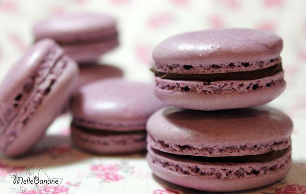 Macarons Chocolat & Fleur de Sel