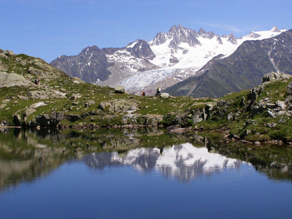 LAC BLANC - Réserve des AIGUILLES ROUGES - Chamonix ( Haute Savoie )