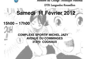 Stage d'Aikido enfants Cugnaux Ligue Midi Pyrénées FFAAA le 11 février 2012
