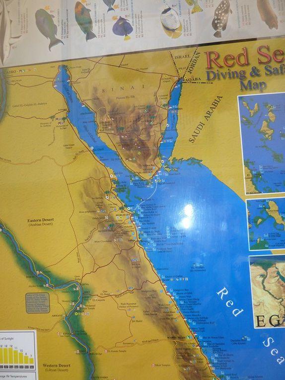 2012 - Egypte (Mer Rouge)