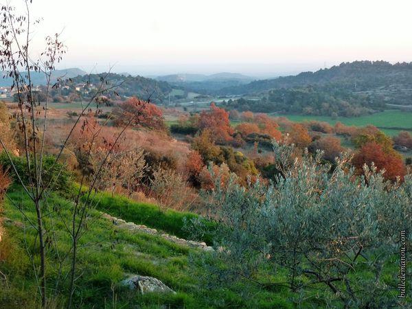La vue au nord sur la plaine de la Durance, le village d'Alleins, les Alpilles et la plaine côté sud