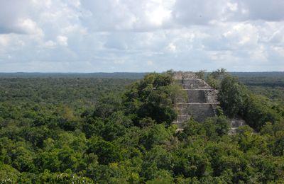 Mexique - Ancienne cité maya et forêts tropicales protégées de Calakmul