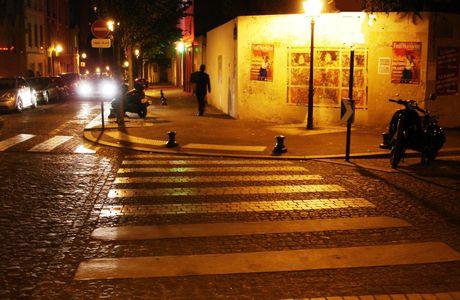 Paris 13ème : la Butte aux Cailles et les léZards de la Bièvre