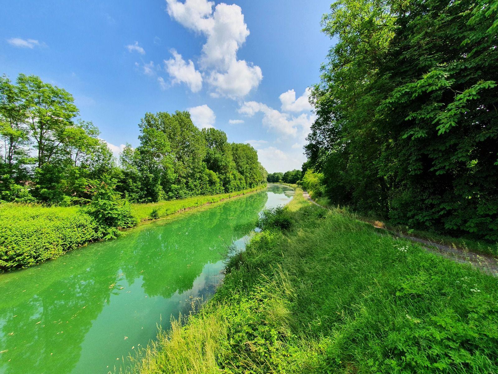 Canal latéral à la Marne à hauteur de Vésigneul-sur-Marne