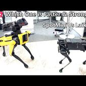 Which One is Faster -Laikago By Unitree Robotics Meeting Spotmini From Boston Dynamics.