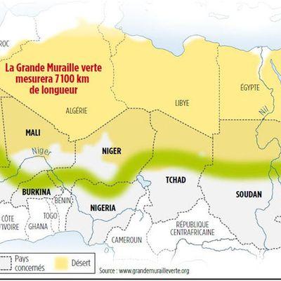 Région du Sahel : la Banque africaine de développement s'engage à mobiliser 6,5 milliards de dollars américains pour l'Initiative de la Grande muraille verte