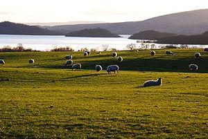 Le rinnovabili sono la prima fonte energetica in Scozia