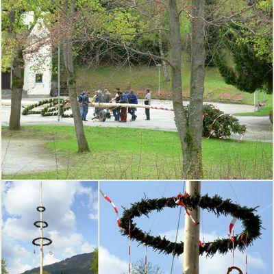 Tradition du 1er mai en Autriche… l'arbre de mai