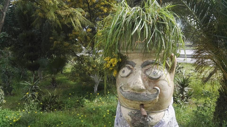 L'homme qui fait pousser des mimosas dans le béton. Pr Neziha Gouider-Khouja