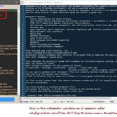 Working with notepad++ - Visual Foxpro codes