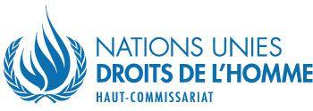 ONU: Incidence des nouvelles technologies sur la promotion et la protection des droits de l'homme dans le contexte des rassemblements, y compris des manifestations pacifiques