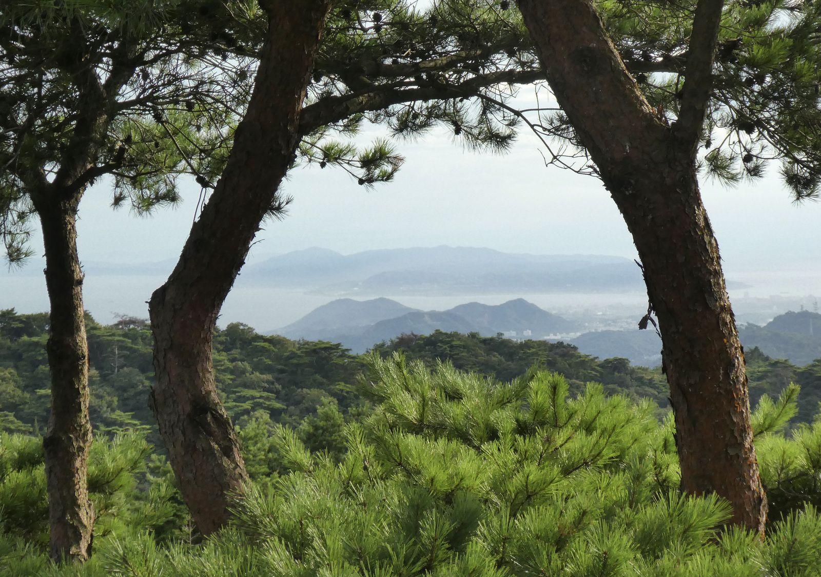 Kobé: Le mont Maya 摩耶山