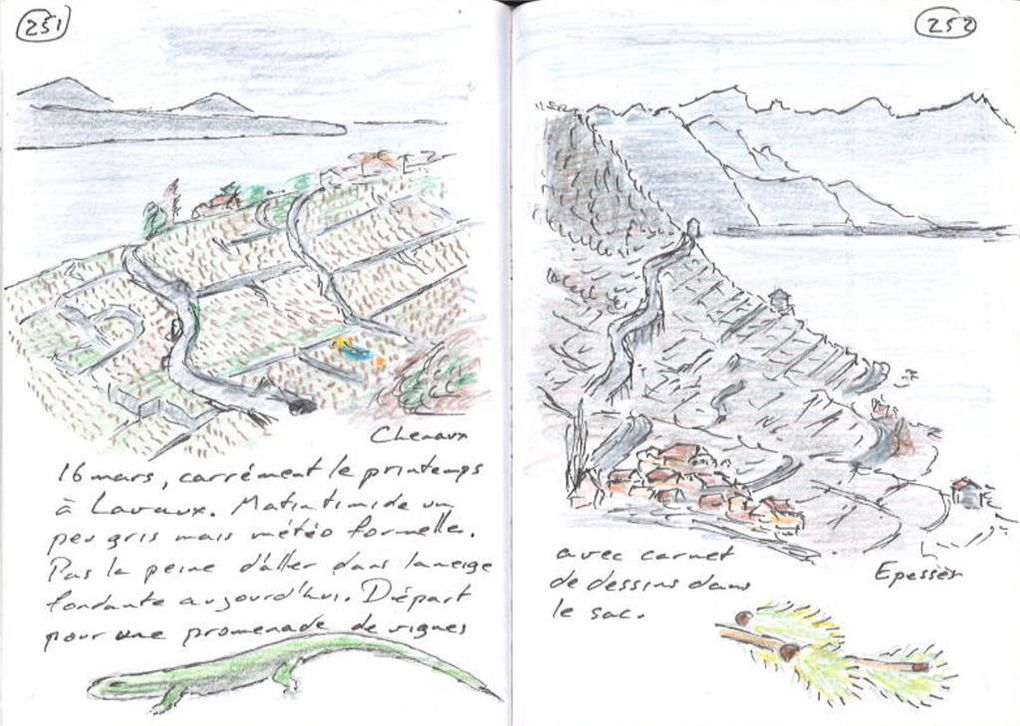 Epesses, Lavaux