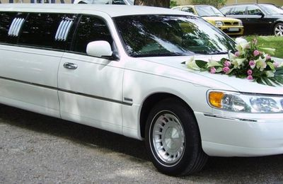 Why You Should Rent a Limo Service on Your Wedding Day