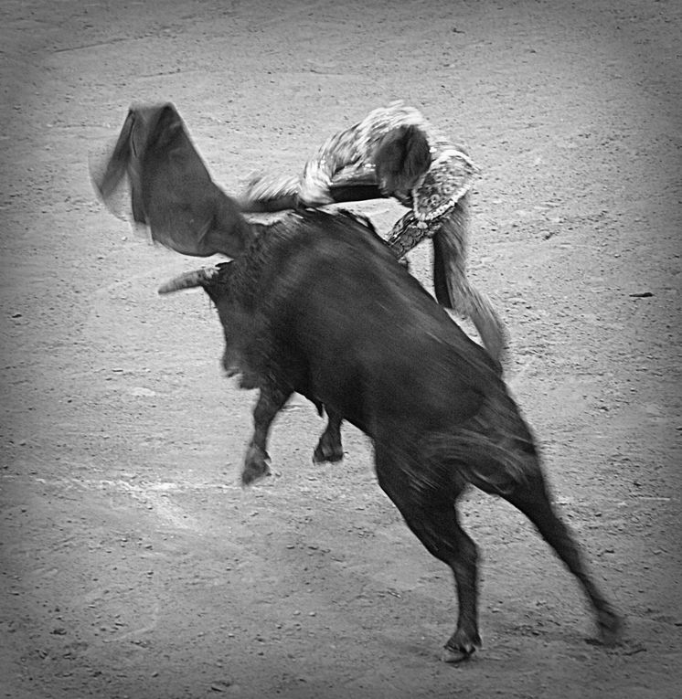Album - 2013 / 03 - Feria-de-la-Faience-Samadet