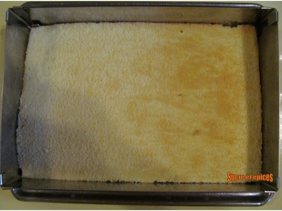 Gâteau aux myrtilles et chantilly mascarpone - Recette en vidéo