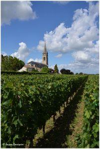 Saint-Emilion, Pomerol, où la vigne se fond dans la ville