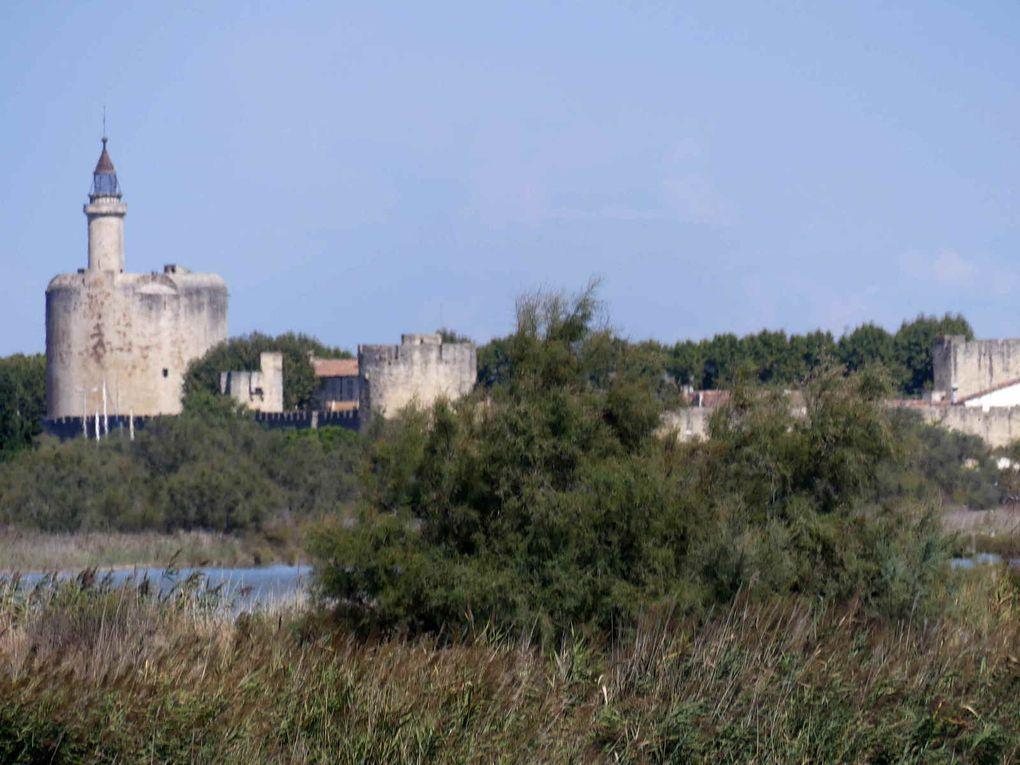 Carnet de voyages : La côte languedocienne, Aigues-Mortes (1)