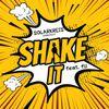 Shake it- der neue Austropophit von Solarkreis feat Fii