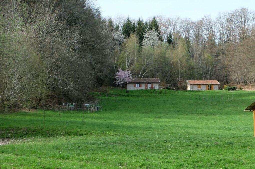 Location Abridici Chalets Camp Palettes