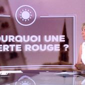 Canicule : pourquoi une alerte rouge ? - Le journal de 20h | TF1